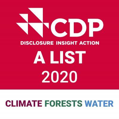 CDP Triple A 2020