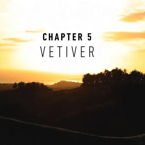 NaturalsTogether™ Chapter 5: Vetiver